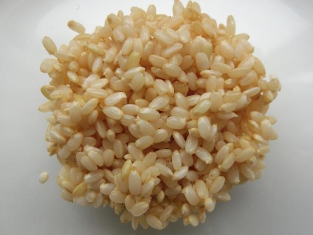 発芽玄米は体にいいの?玄米との違いや家での作り方など。